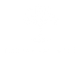 Native Forestry Logo